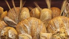 Rustic Loaves